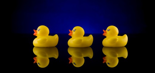 Rubber Ducks in a Row on Table